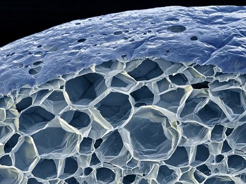 Так выглядит структура пенопласта под микроскопом