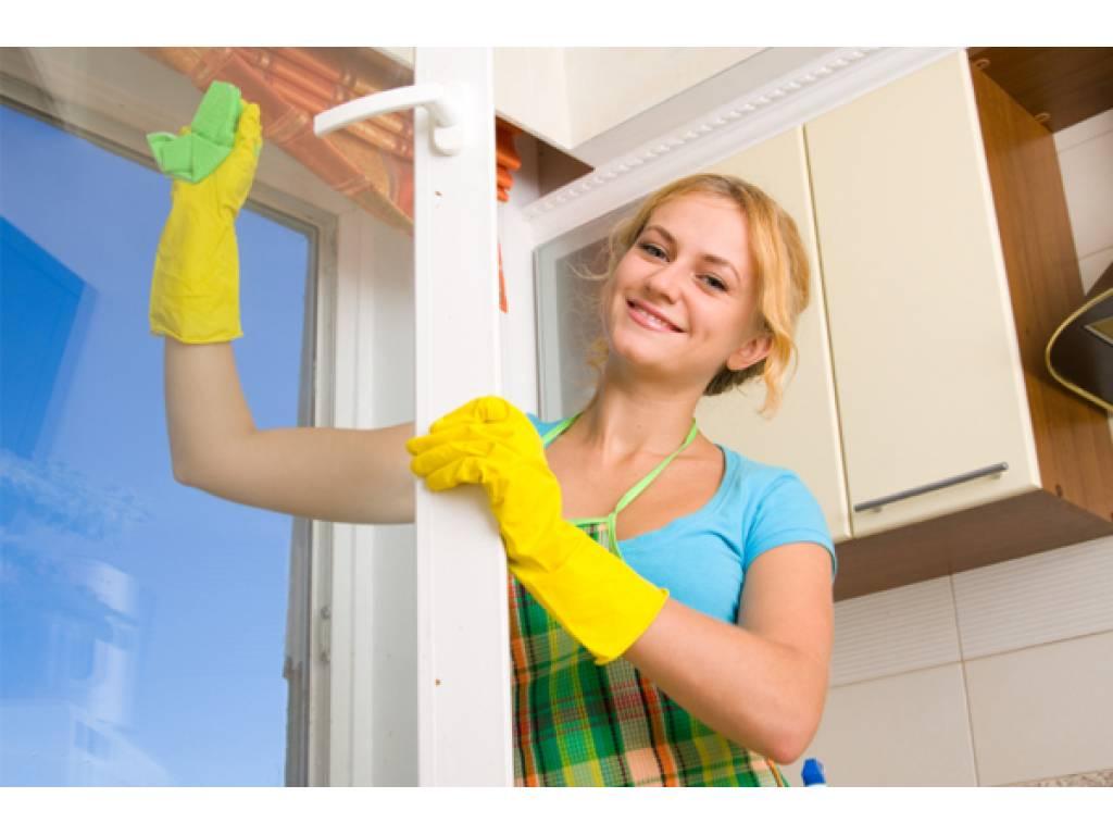 Чистота – это уют и здоровая атмосфера в доме.